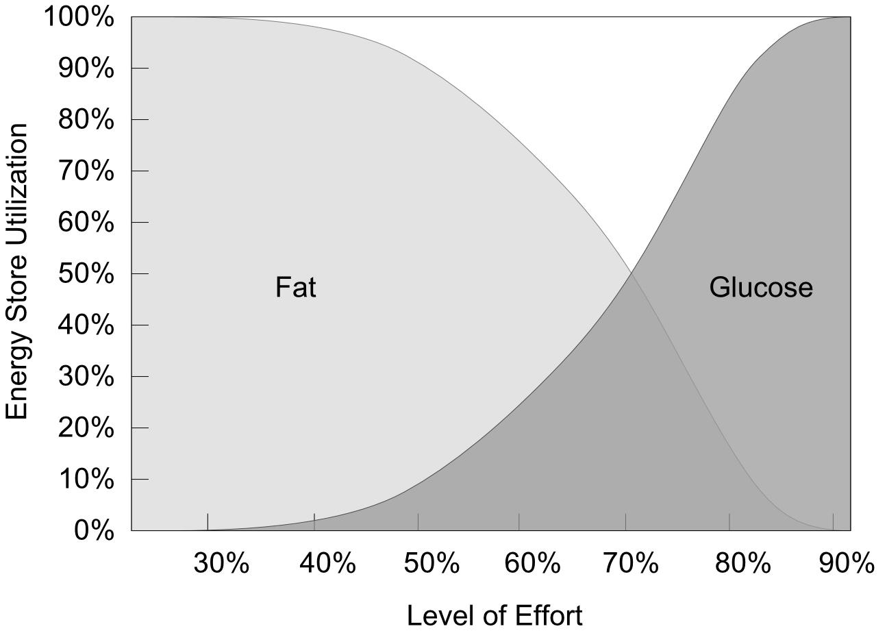Fat vs